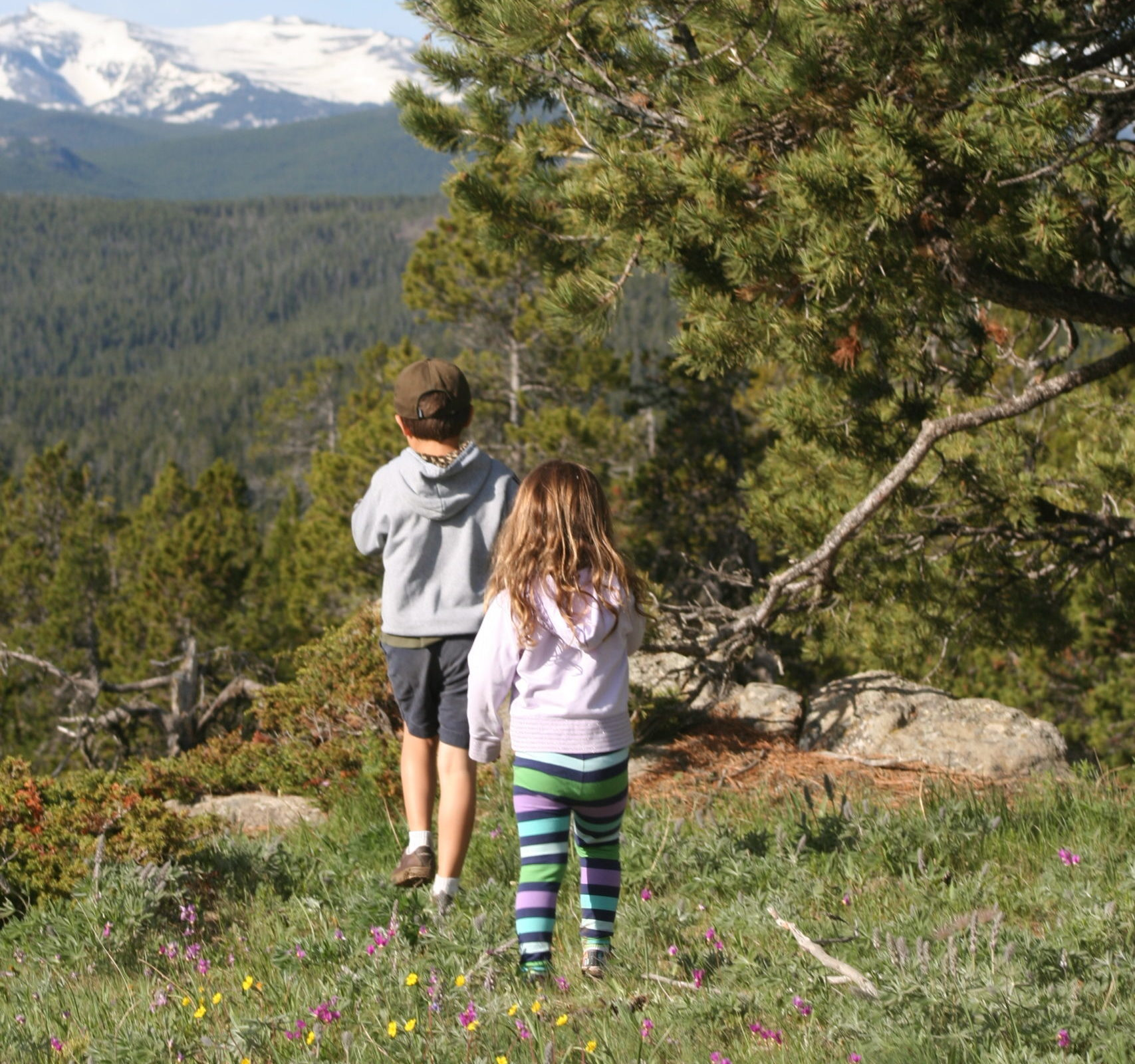 Must-Have Essentials When Hiking with Kids